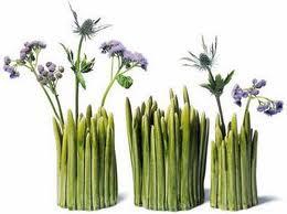 ot sekilli ilginc vazo modelleri En ilginç Vazo Modelleri 10