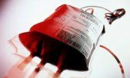 Kan Olmazsa Olmazımız