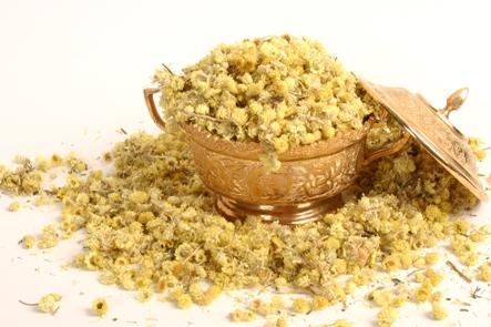 Altın Otunun Bilinen Faydaları ( Ölmez Çiçek )