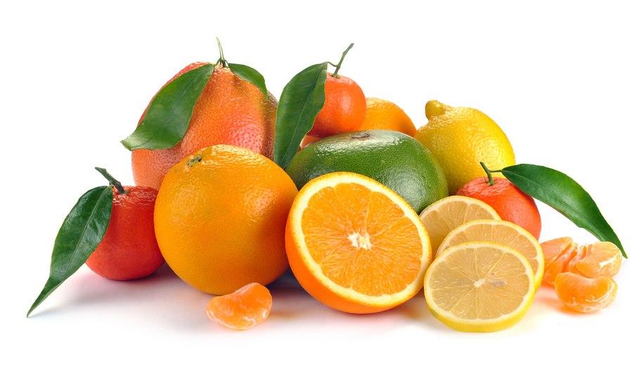 turunçgiller2