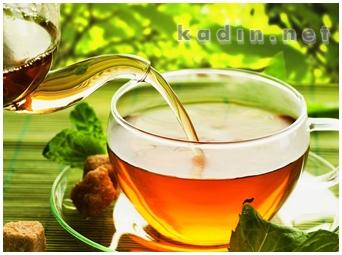 Zayıflatan Bitki Çayları Hangileridir
