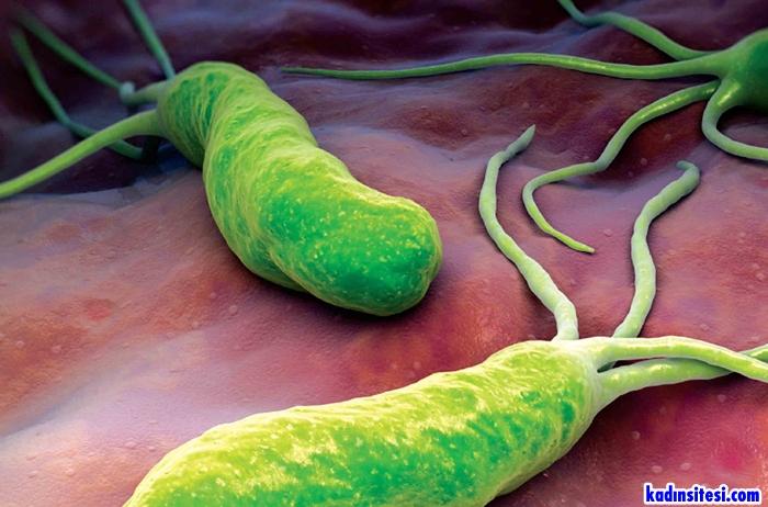 Helikobakter Pilori Nedir Belirtileri Nelerdir