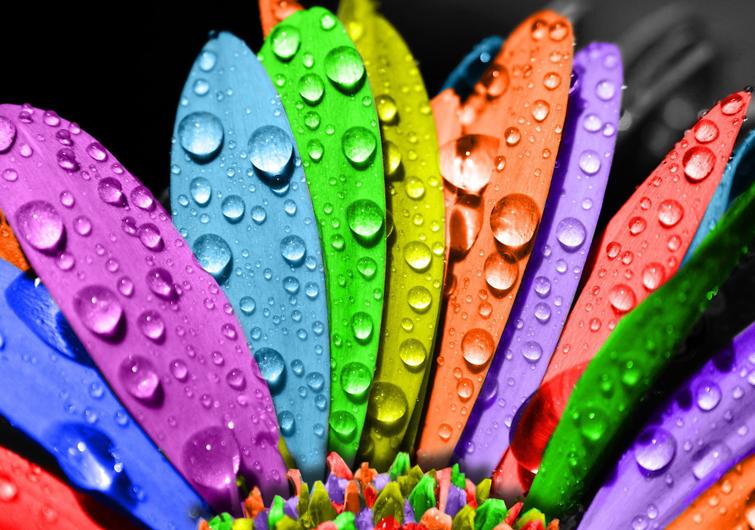 burcalarin renkleri Bana Burcunu Söyle Sana Favori Rengini Söyleyeyim 3