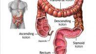Bağırsak Kanseri Hakkında Bilmemiz Gerekenler